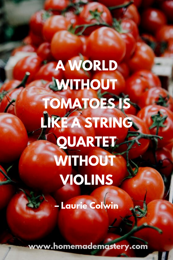A World Without Tomatoes Is Like A String Quartet Without Violins - Quotes about tomatoes