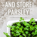 How to grow parsley and how to store parsley! Gardening tips to help you grow this refreshing herb indoors or outside. This article also comes with some delicious parsley recipes.