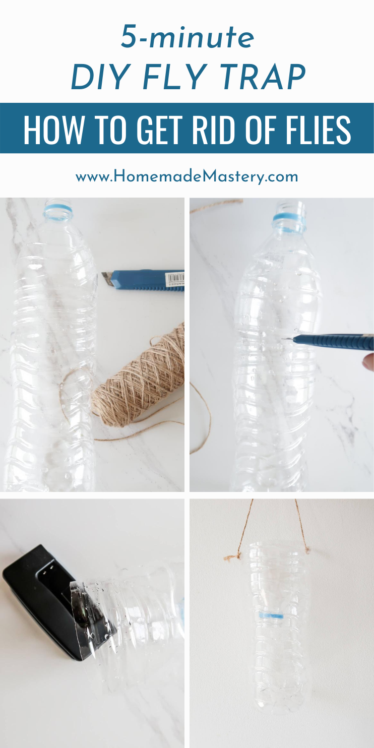 How to get rid of flies and make a DIY fly trap! If you're struggling with getting rid of flies at home or in your garden, you'll find this quick DIY project very useful!